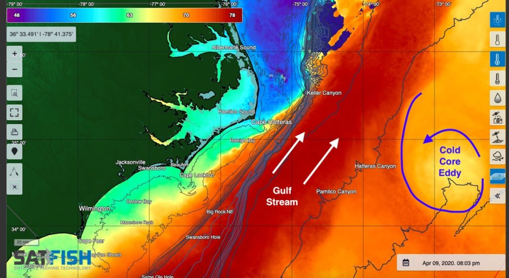 Sea Surface Temperature showing Gulf Stream and cold core eddy